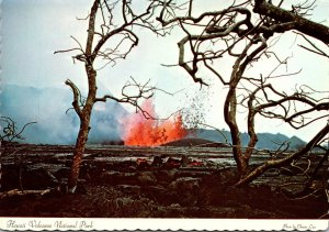 Hawaii Volcanaoes National Park Eruption Scene