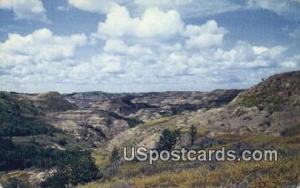 Cedar Canyon, Colorado Postcard       ;       Cedar Canyon, CO Post Card