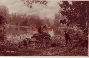 NEDDY NIBBLES donkey in hay field with wagon and two men ENGLAND Tunbridge Wells