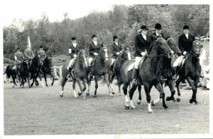 Horse Sports Equestrian sport Horses RPPC Unique Photo Dutch Championships 03.23