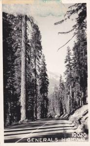 RP; General Highway going through Sequoia National Park, California, 10-20s
