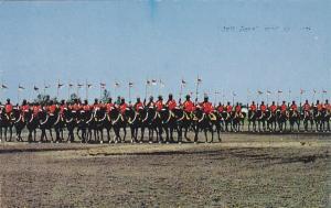 TWEED , Ontario, Canada, 40-60 ; R.C.M.P.