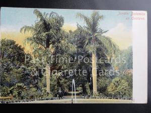 Old PC Spain: Jardin Botanica en Orotava