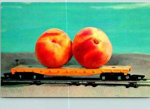 Peaches Golden Peach Biggest Georgia Postcard unused (20397)