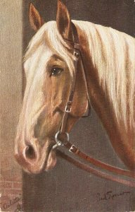 Paul Thomas. Palomino Pony Horse  Tuck Oilette Germany PC # 353B