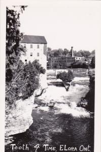 RP: ELORA , Ontario , Canada , 30-40s ; Tooth of Time
