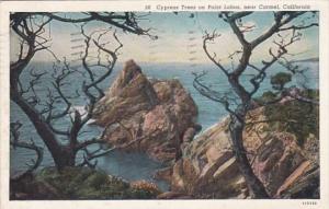 California Carmel Cypress Trees On Point Lobos 1939 Curteich