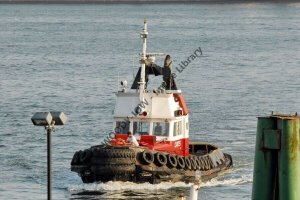 ap0837 - Canadian Tug - Charles H Cates XII - photograph 6x4