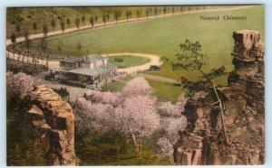 MT. SOLON Virginia VA ~Handcolored NATURAL CHIMNEYS Visitors Lodge 1935 Postcard