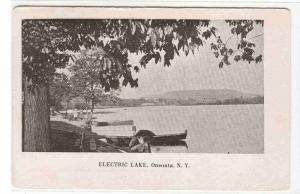 Electric Lake Oneonta New York 1910c postcard