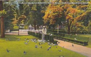 Florida St Petersburg Feeding The Pigeons In Williams Park