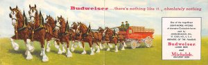 Clydesdales used by Budweiser, double folded card St. Louis, Mo., USA Brewery...