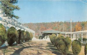 Hot Springs Arkansas~Mountain Valley Mineral Water Spring~Autumn Trees~Postcard