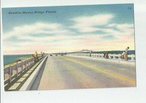 Linen Postcard ~St Pete Petersburg Fl ~  SUNSHINE SKYWAY BRIDGE