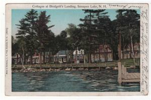 Sunapee Lake, New Hampshire, Cottages at Blodgett's Landing 1906, COPPER WINDOWS
