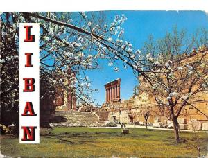 Lebanon Liban, Spring at Baalbeck, Printemps