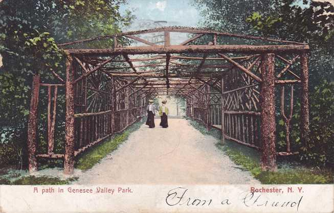 A Path in Genesee Valley Park NY, Rochester, New York - pm 1906 - UDB