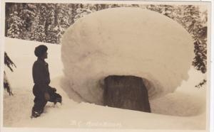 Canada Banff Mushroom Snow Formation Real Photo