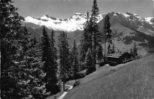 Switzerland Adelboden Hornliweg Tierhornli Steghorn Fitzer Rostock Postcard