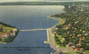 Aerial View Tampa FL Unused