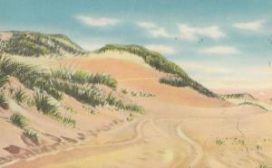 Sand Dunes, Cape Cod, Mass, unused Postcard