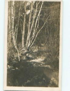 Old rppc NATURE SCENE Great Postcard AB0798
