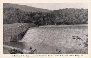 Dam , Douthat State Park , CLIFTON FORGE, Virginia , 30s