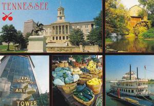 Tennessee The Volunteer State Multi View