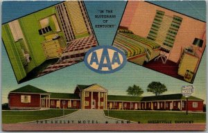 Shelbyville, Kentucky Postcard THE SHELBY MOTEL Highway 60 Roadside Linen c1940s