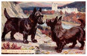 Dog , Auld Aquaintance , Advertising C.H.Basset Apothecary