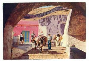 Donkeys in a harbour lane, Santorin Island, Greece 50-70s