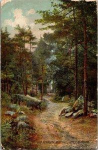 Old Roadway Wolf Hill Gettysburg PA c1910 Vintage Postcard S24