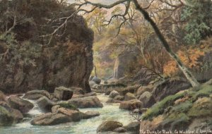 CO. WICKLOW , Ireland , 1904; The Dargle Rock, AS; E. Longstatt