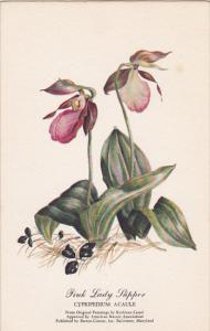 Pink Lady Slipper Oil Painting by Kathleen Cassel