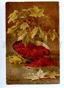 157189 RUSSIA Currant on Table by KLEVER vintage Colorful PC
