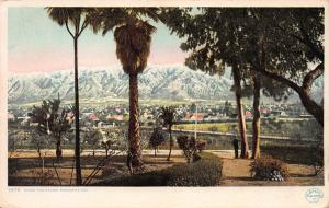 Snow and Palms, Pasadena, California, Postcard, Used in 1909 from Pomona, CA