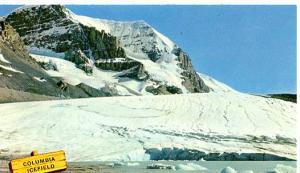 Canada- Alberta, Columbia Ice Field