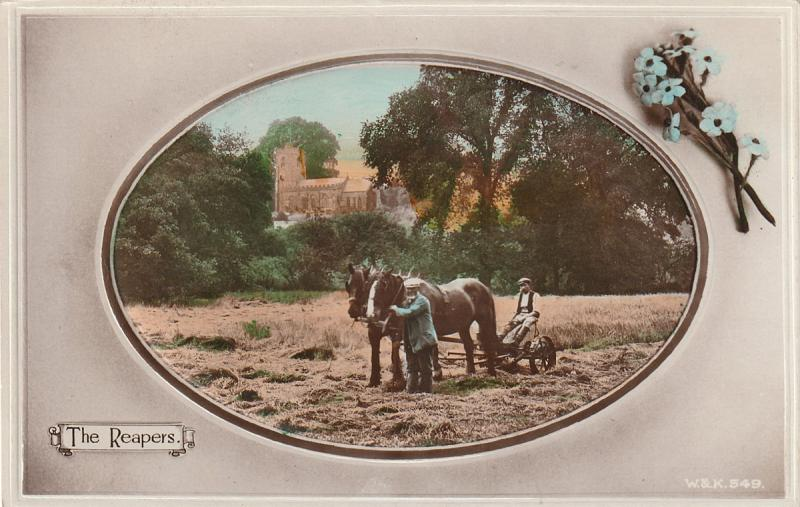 The Reapers, farming scene, UK, c. 1910s, rare tinted real photo postcard