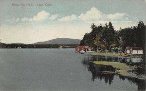 LPS78 Alton Bay New Hampshire Loon Cove Vintage Postcard