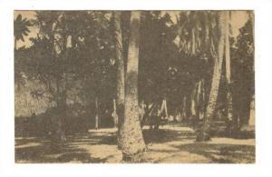Les Nouvelles - HEBRIDES (now Vanuatu), Village indigene de l'Ilot Vila, 1910s