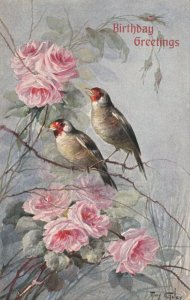 AS: MARY GOLAY, 1900-10s; Birthday Greetings, Birds and pink roses