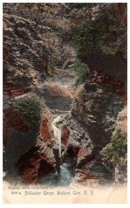 New York IStillwater Gorge Watkins Glen