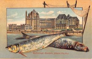 Marlborough Blenheim Atlantic City New Jersey Antique Postcard L1095