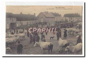 In Morvan Saulieu Old Postcard A corner of the fairground (walking cattle cow...
