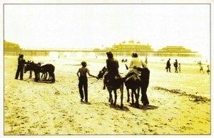 Nostalgia Postcard Blackpool Beach, Donkey Rides 1950 Reproduction Card NS1