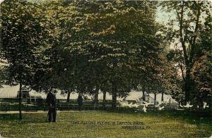 Harrisburg PA~Men Watch Tame Pigeons Flying in Capitol Park~Conservatory~1910