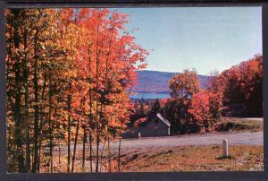 Autumn View,Adirondack Mountains BIN