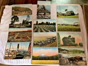 12 C1910 Postcards OREGON Farming and Country Subjects