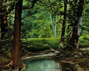 Raphael Tuck Series 2680 Louisville Kentucky KY Cherokee Park UNP Vtg Postcard