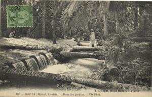 Tunisie CPA Nefta (Djerid Tunisie) - Dans les Jardins  (125145)